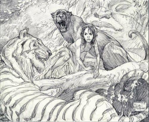 Iain Mccaig The Jungle Book