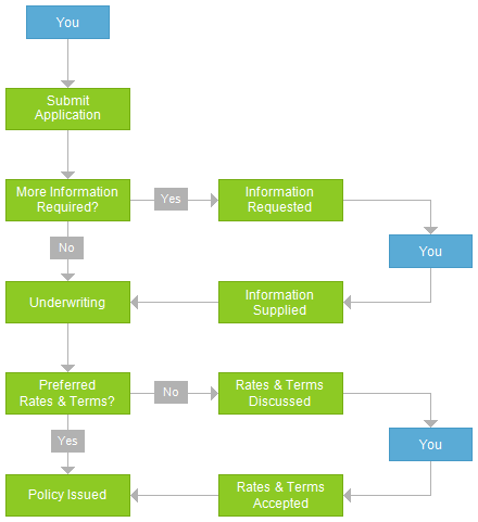 Application Process Process Flow Chart Process Flow Business