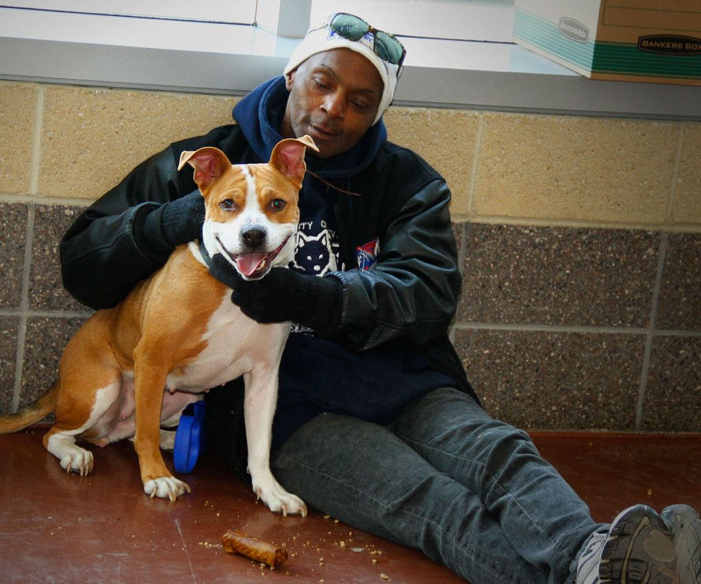 Emergency Veterinary Care for Pets of the Homeless in 2020