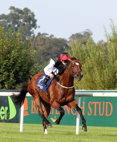 Cornerstone Stud in South Australia will be the southern hemisphere base for the Irish National Stud's recent signing Free Eagle (Ire) (High Chaparral {Ire}).  The winner of last year's G1 Prince of Wales's S. at Royal …
