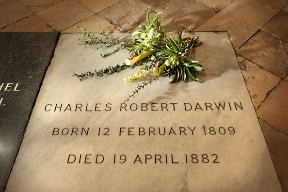 A Wreath From Down House Is Placed On The Grave Of Charles Darwin