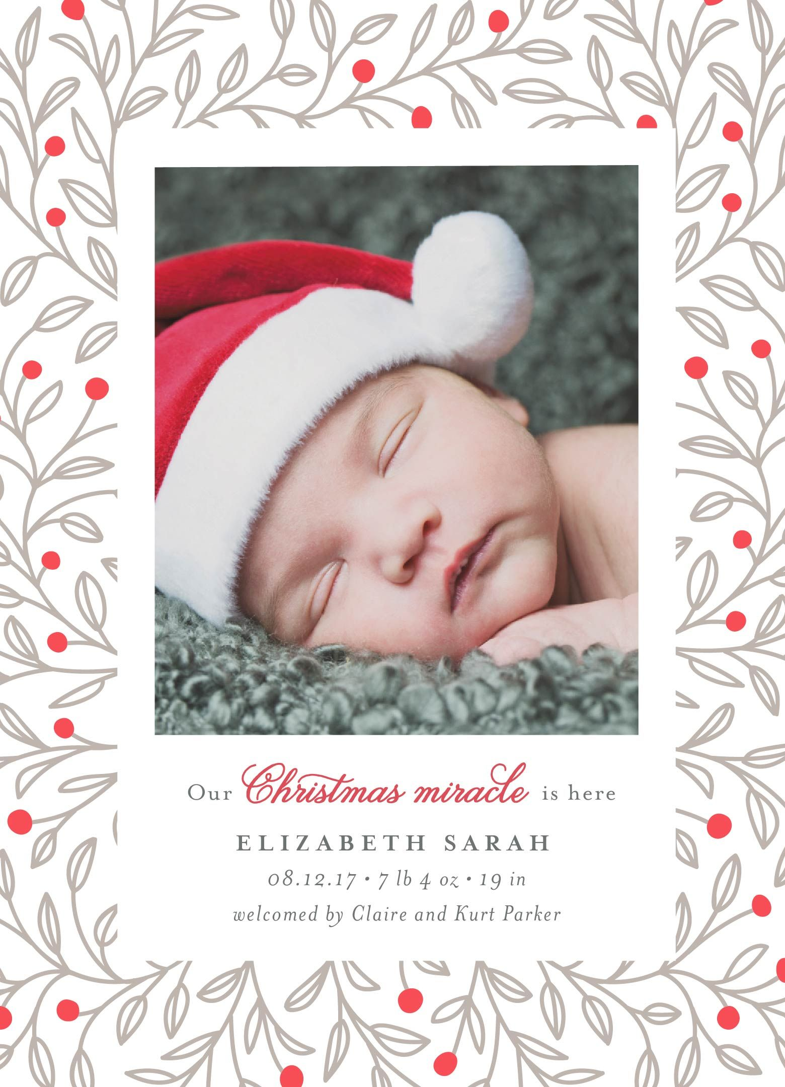 Minted Christmas Cards.Christmas Miracle By Minted Artist Jana Volfova