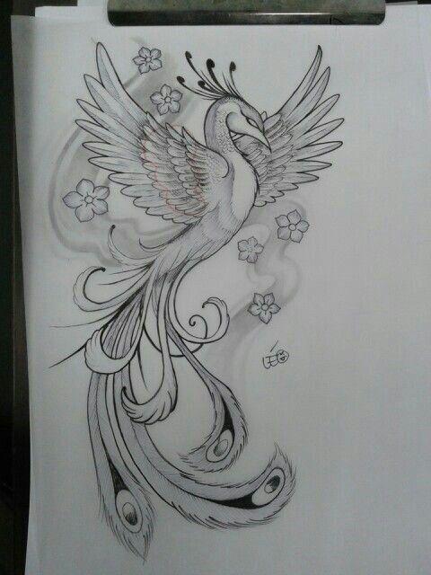 Tattoo Fênix Tatuagem Phoenix Projeto Do Tatuagem Phoenix