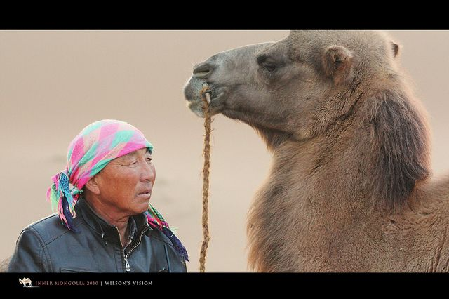 The CAMEL MAN by Wilson's Vision, via Flickr