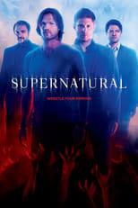 Ver Series Populares Pagina 11 Online Gratis Pelisplus Supernatural Seasons Supernatural Season 10 Supernatural Poster