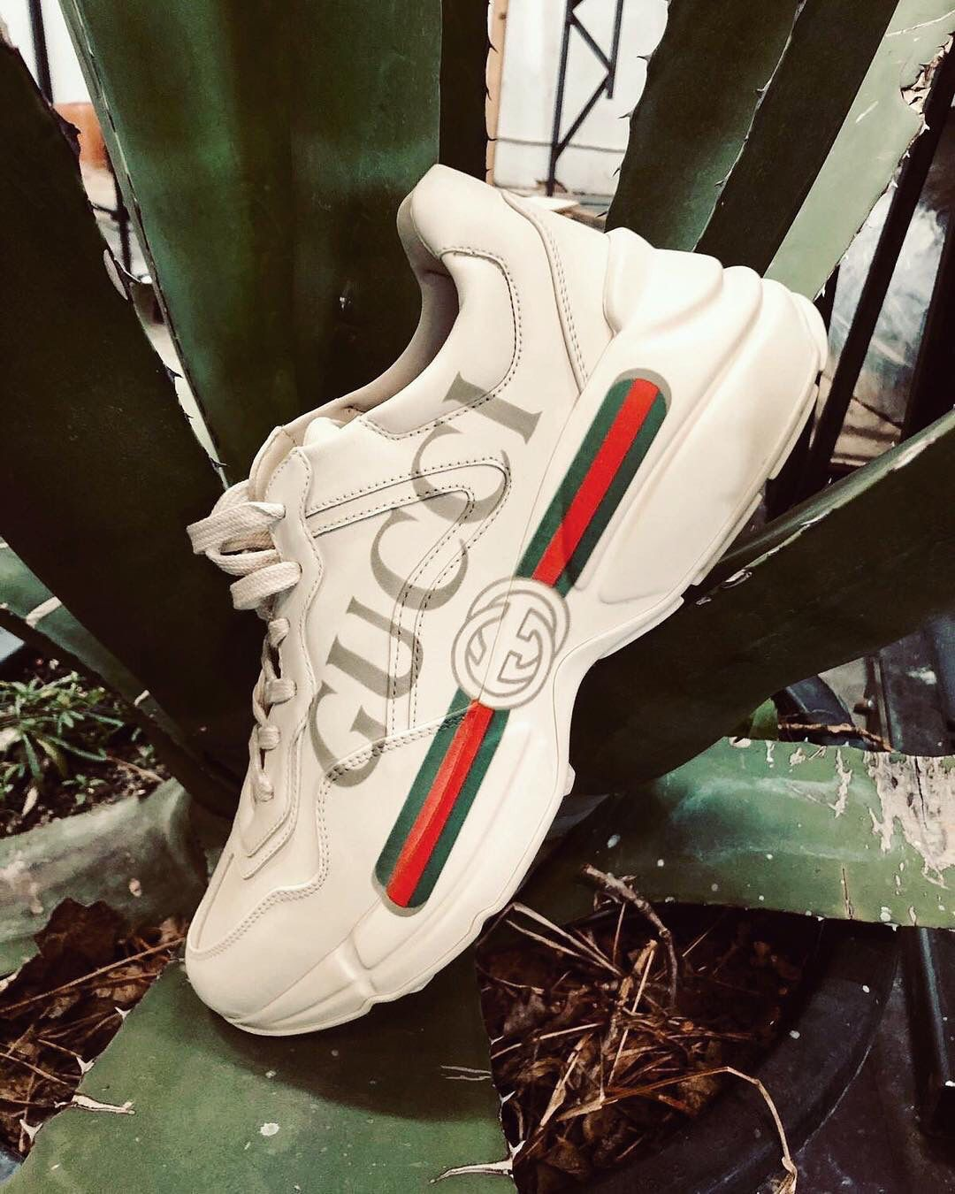 brand new da23d 20de2 Gucci sneaker — all i want for Christmas is you . Gucci Sneakers Outfit, Air