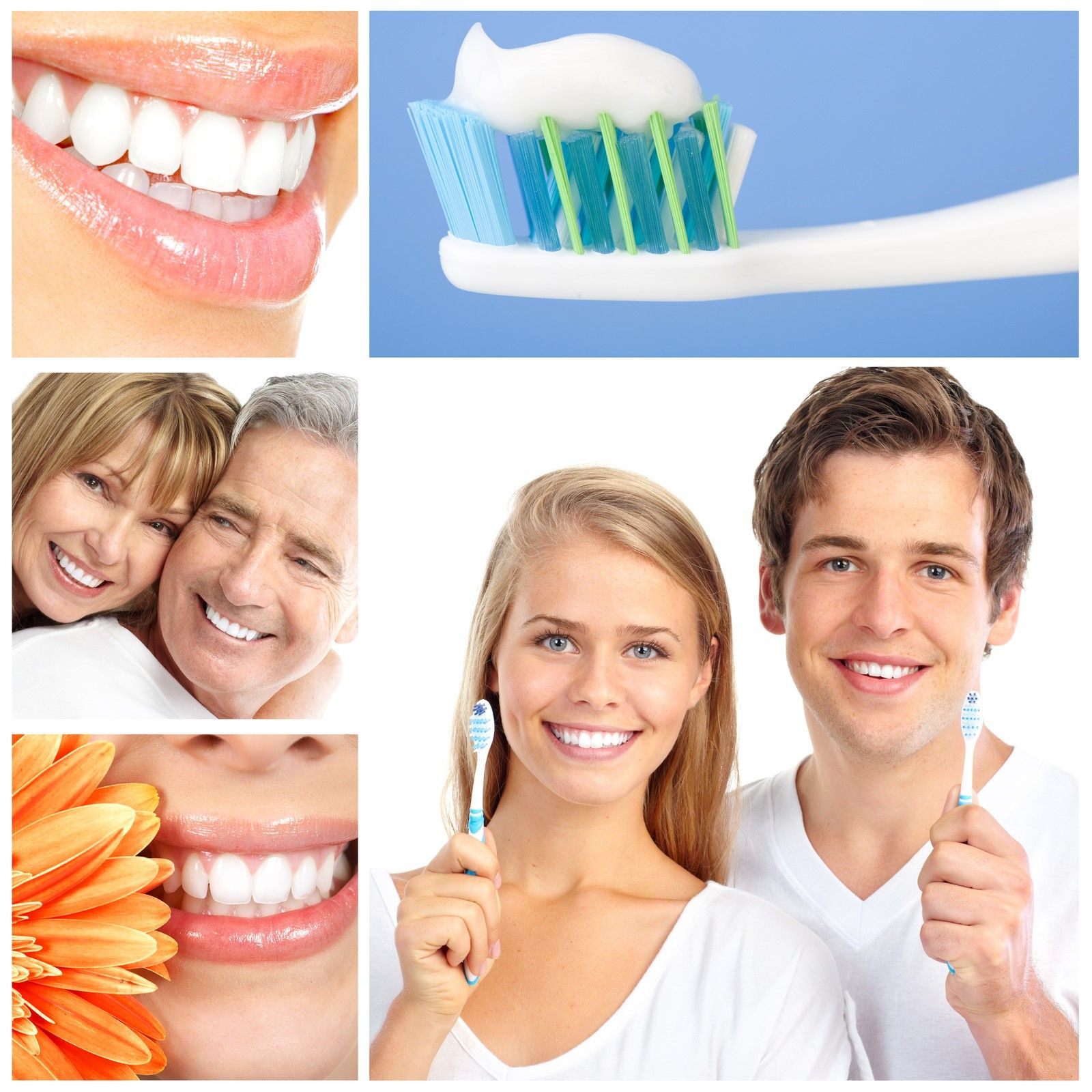 Dental Insurance for Individuals and Families Dental
