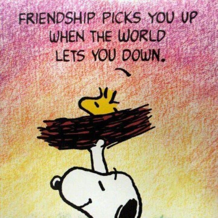 Friendship.... True friends wont let you down! they understand, help you, and not try to push you down! They will stick by you threw the good and the bad and when they are still there throughout the bad thats when you know you have a keeper :)
