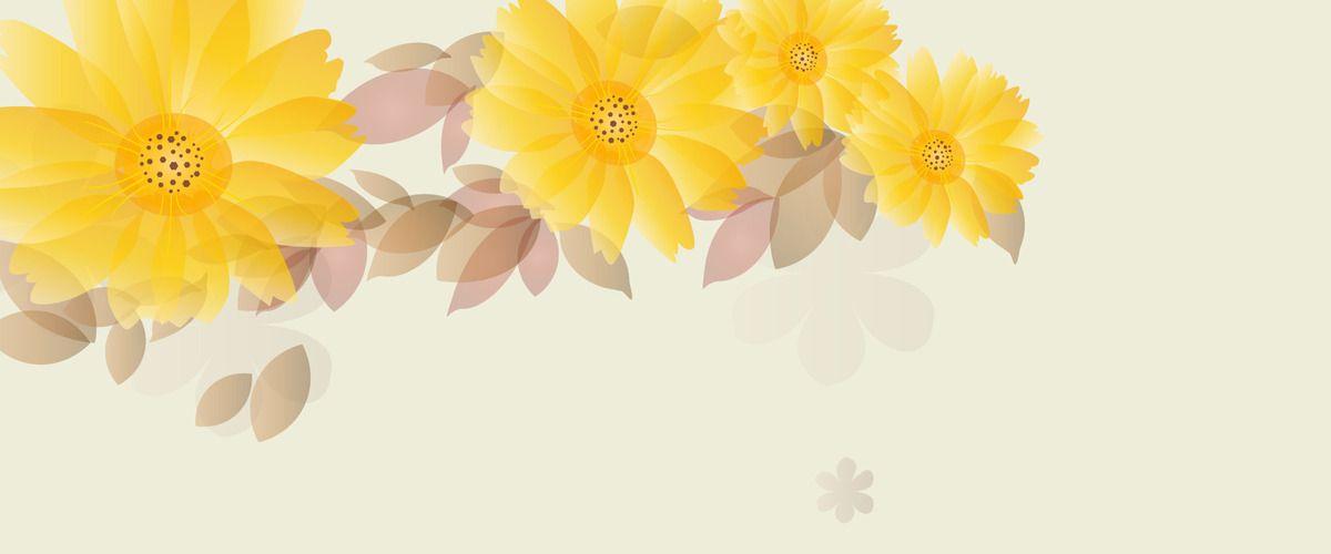 أقحوان جميلة نمط الخلفية Background Patterns Chrysanthemum Pattern