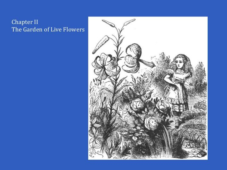 John Tenniel's Through the Looking-Glass - illustrations chapter 2 the garden of live flowers.