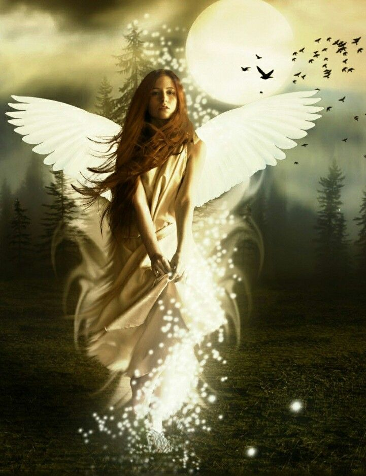 Your Guardian Angel Knows You Inside And Out And Loves You Just The Way You Are Angel Wallpaper Angel Images Fantasy Girl
