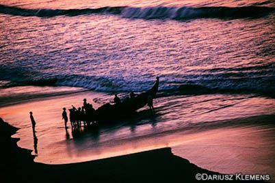 Pepper Coast Photography Expedition 2019 A Unique Photographic Journey Into The Tropical Heart Of South India 14 Day Photography Workshop In Kerala Travel Photography Photography Workshops Kerala