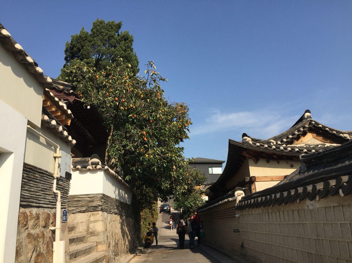 South Korea Trip2015:10:7-11