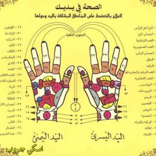 فضل التسبيح والتحميد والتكبير على أصابع اليدين Health Signs Health And Fitness Expo Philosophy Books