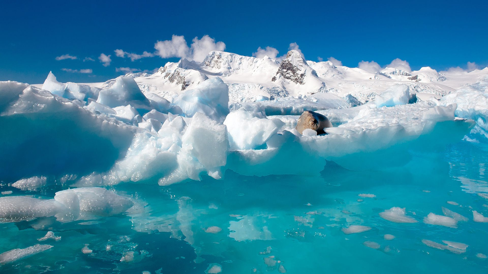 Antarctica mountain backgrounds earth winter for Antarctica places to stay