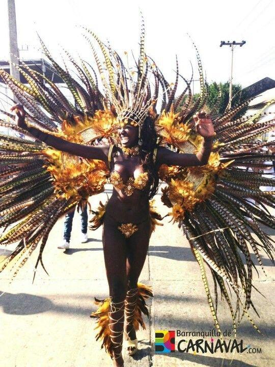 La estetica y color quemado del Disfraz del Carnaval De Barranquilla ayudara en la paleta de colores