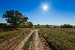 The Sunshine Vitamin: ideas toward getting enough vitamin D in winter