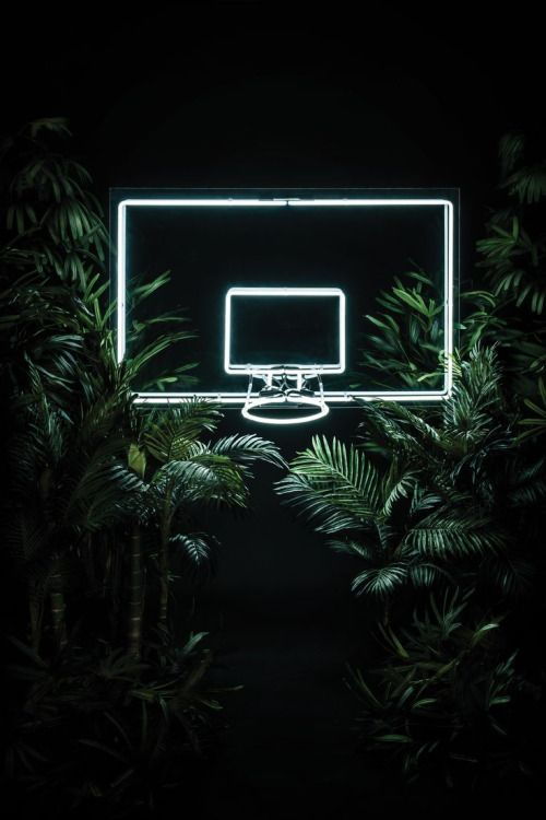 Masscurrent S Stussy Neon Basketball Ring Basketball Pinterest