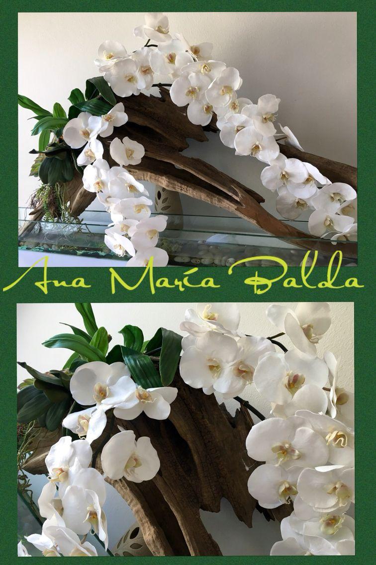 Ana María Balda diseñando con orquídeas y Troncos secos | orquideas ...
