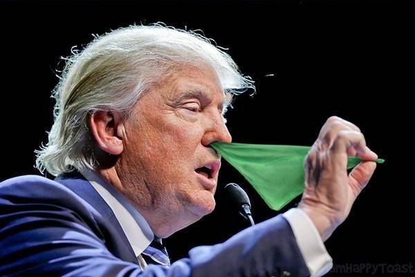 Donald Trump Pulling Colored Flags From His Nose , http://happybrainy.com/donald-trump-pulling-flags-nose/