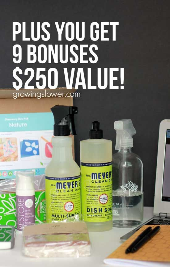 Learn more about the 2016 Ultimate Homemaking Bundle Free Bonuses - They are valued at over $250. Find out how I'm making the most of mine, and how you can get them too in this post.