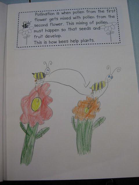 Classroom Fun: Bees