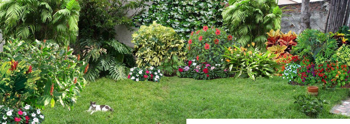 jardin pequeo buscar con google