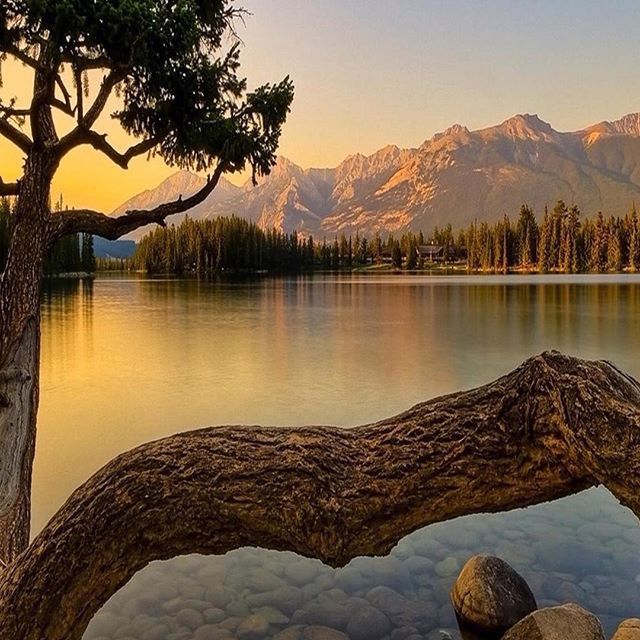 Pin By Green Eyes On طبيعة Hd Nature Wallpapers Nature Wallpaper Landscape Pictures