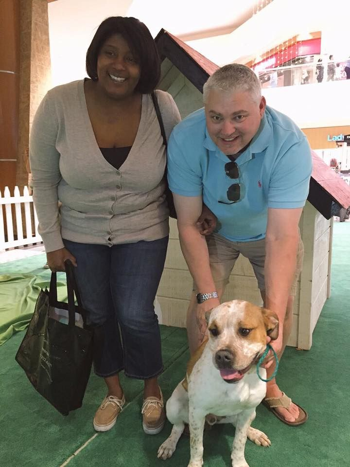 Last adoption of the day at Home for the Holidays! Riley found his forever family with Lawanda and Raymond!