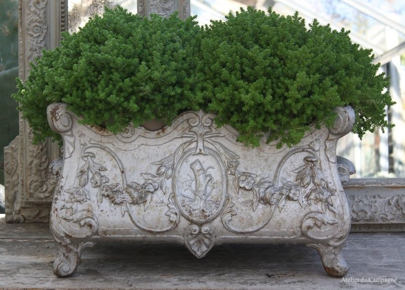 French Jardiniere Louis Xvi French Country Decorating Garden Design Flower Arrangements