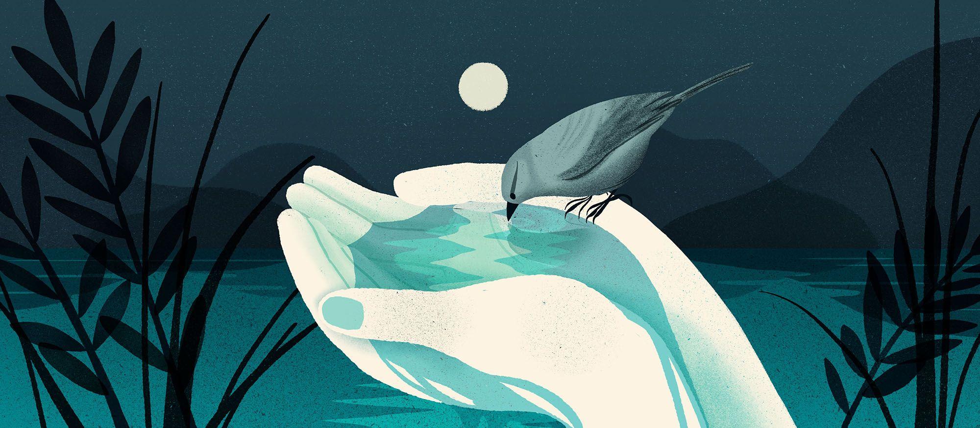 Fountain Geraldine Sy 插画 画