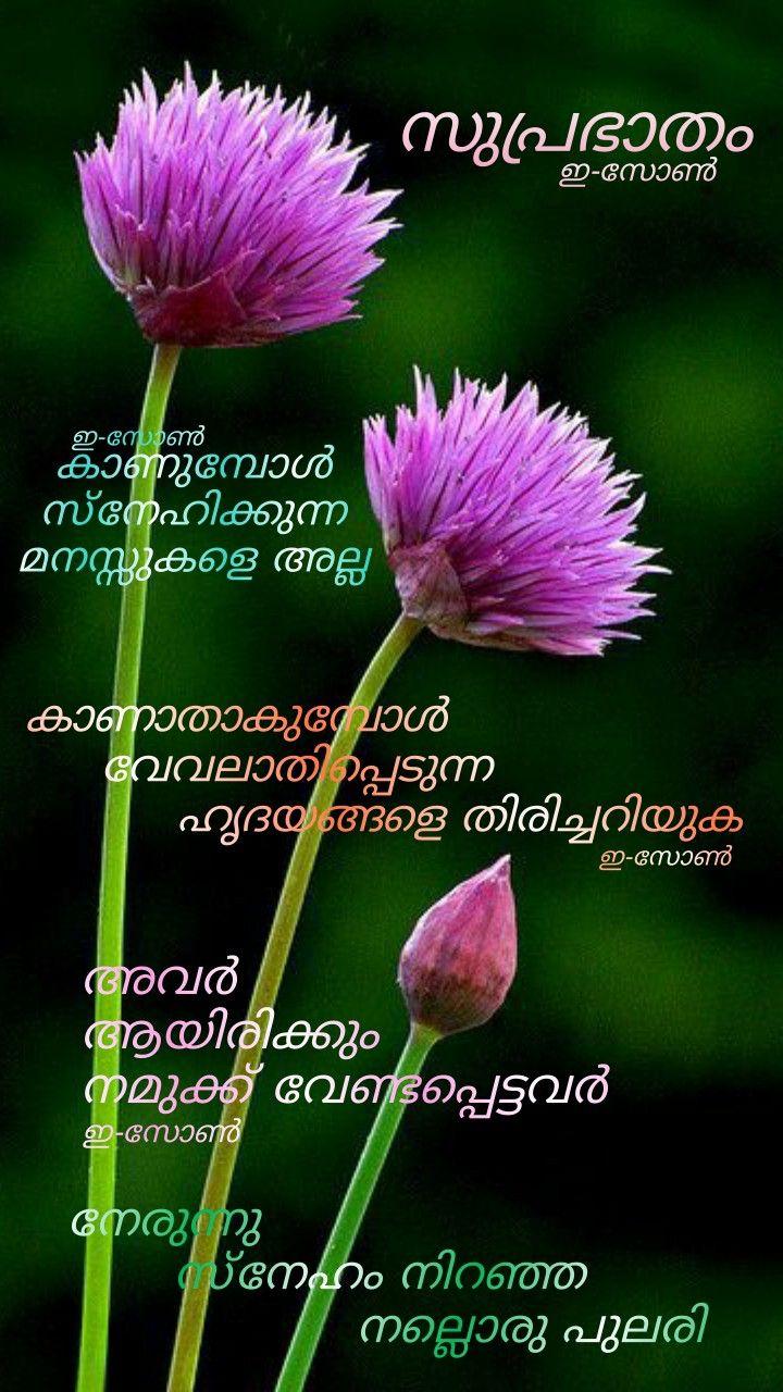 Pin by Eron on Good morning ( Malayalam ) Good morning
