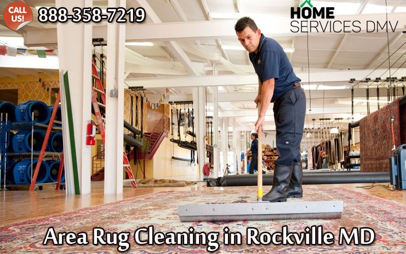 Pin by Home Services on Home Services DMV Rug cleaning