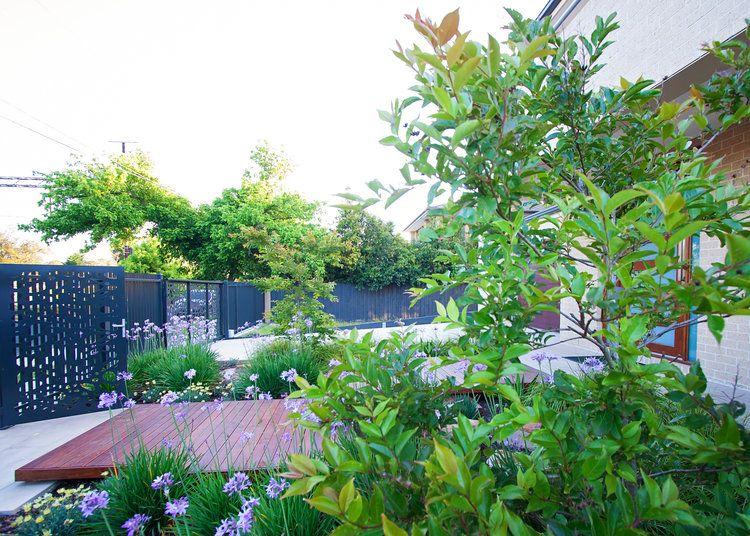 Mg Gardens Melbourne Landscape Designer Meg Geary Residential Garden Design And Natural Playgrounds Landscape Design Natural Playground Playground Design