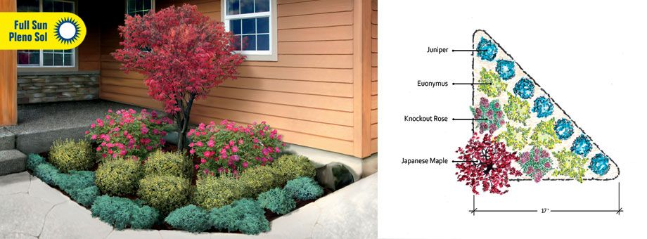 Evergreen shrub for corner of house landscape garden for Corner house garden designs