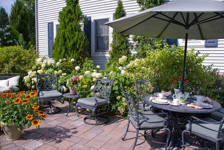 Patio Furniture Next To House With Hydrangeas In Bloom