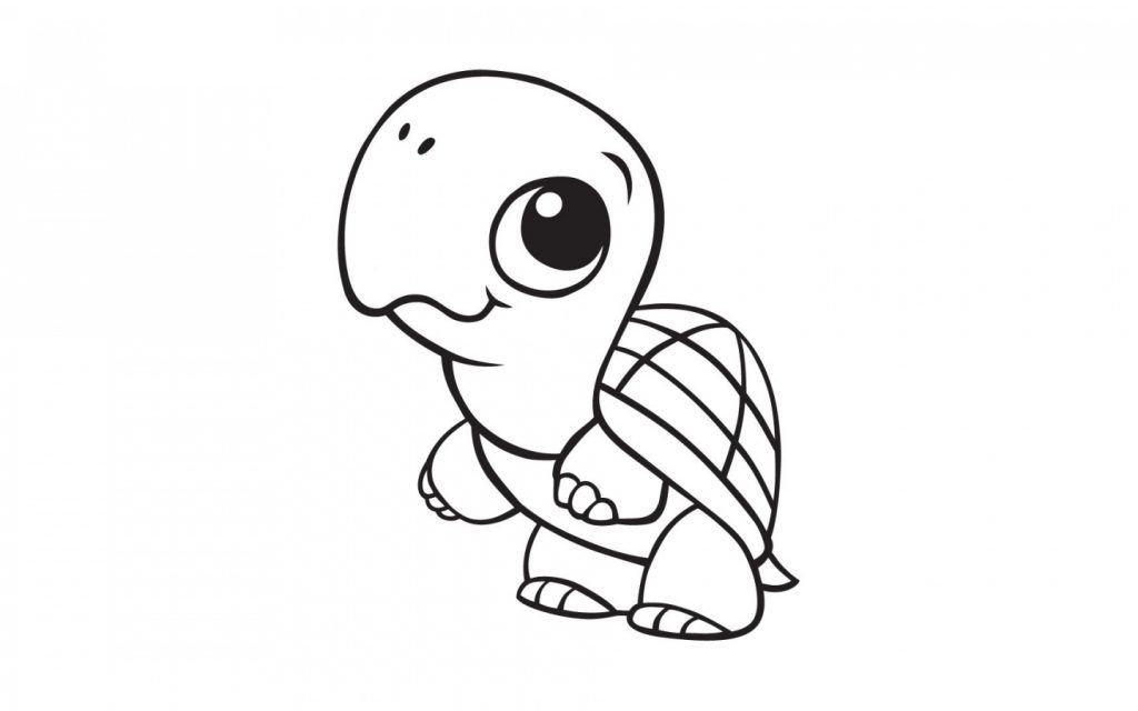 cute animal coloring pages turtle