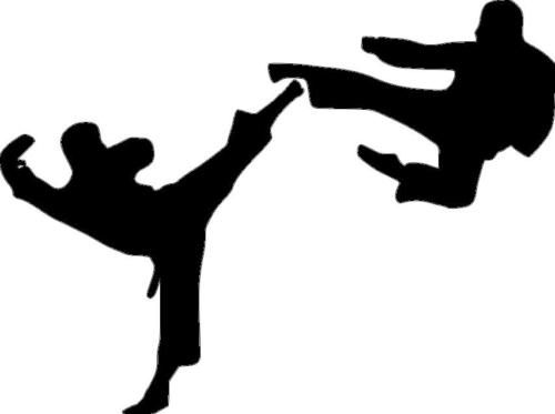 Big Karate Boy Child Room Taekwondo Kick Vinyl Wall 287 Martial Arts Kids Karate Boy Karate