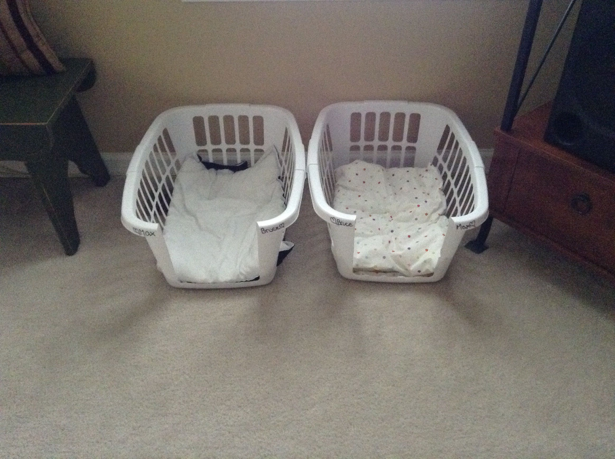Cheap easy diy dog bed flip it over and bam it 39 s a for Easy diy cat furniture