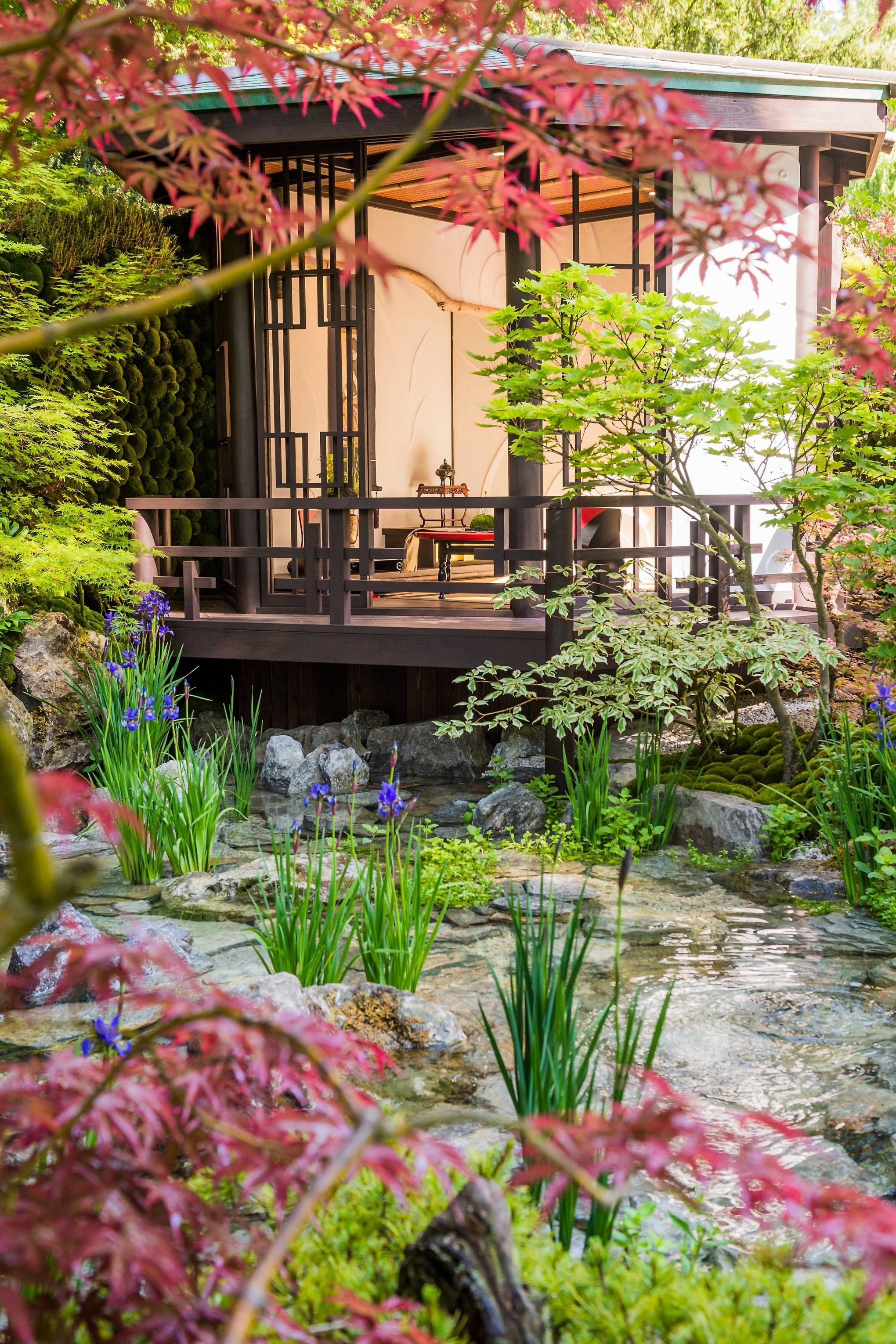 The Chelsea Flower Show 2018 in pictures Chelsea flower