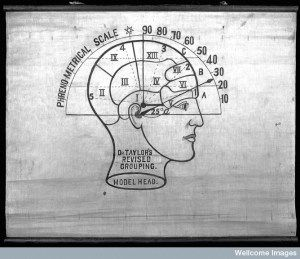 blog ThInk: exploring the brain & the science, art