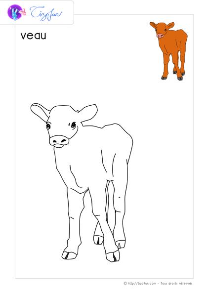 Gut bekannt animaux-ferme-dessin-a-colorier-veau-coloriage | ferme | Pinterest  FW17