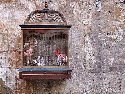 Vogelkooi In Huis : Bol beeztees sonia vogelkooi zilver cm