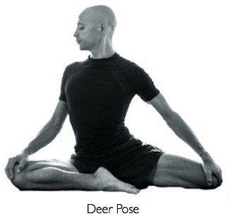 yin yoga pose  deer pose  yin poses yin yoga yin yoga