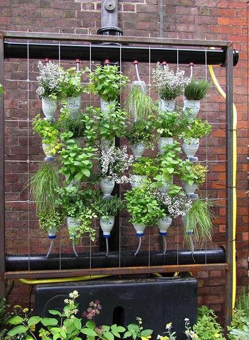 Como Hacer Un Jardin Vertical Con Botellas En 2020 Jardin Vertical Con Botellas Jardines Verticales Como Disenar Un Jardin