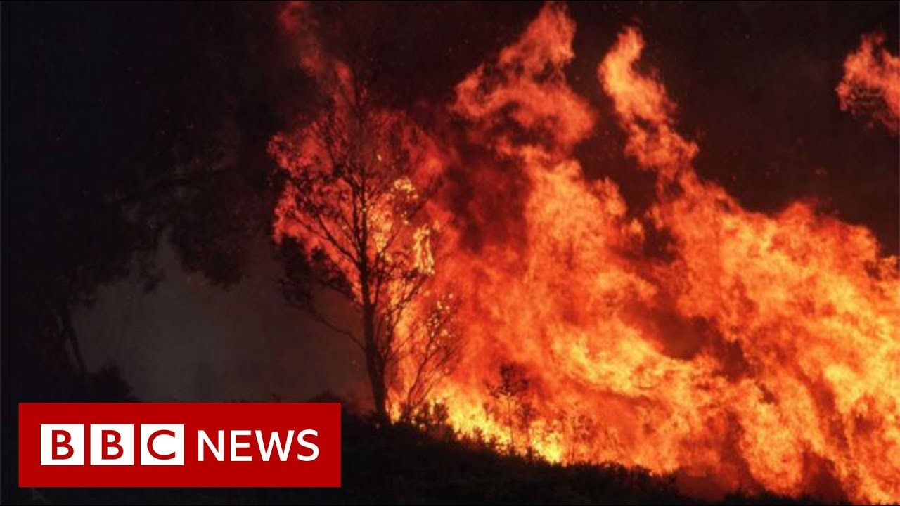 Australia Fires Climate Change Increases The Risk Of Wildfires Bbc News Youtube In 2020 Climate Change Bbc News Climates