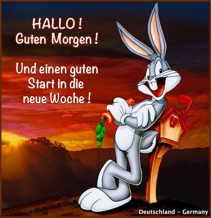 Hallo Guten Morgen Und Einen Guten Start In Die Neue Woche