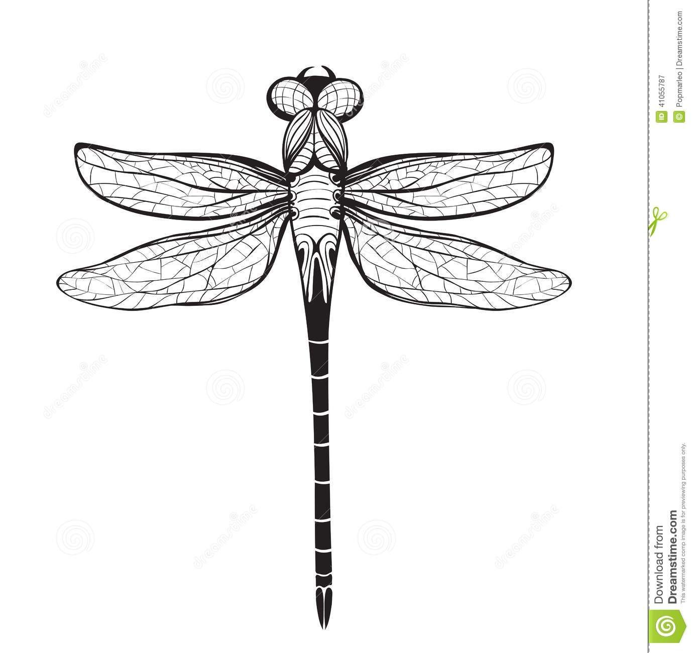 Dragonfly Insect Black Inky Drawing