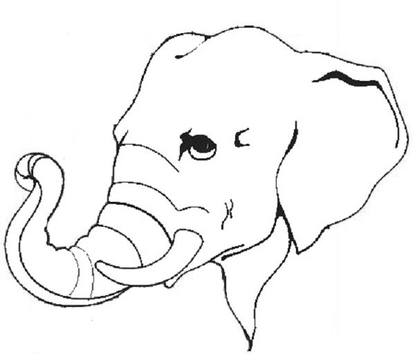 Animal Camouflage Coloring Pages Elephant Face Drawing Elephant