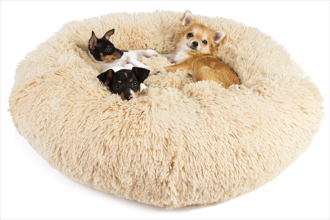 Fluffy bed DOG LOVE Pinterest